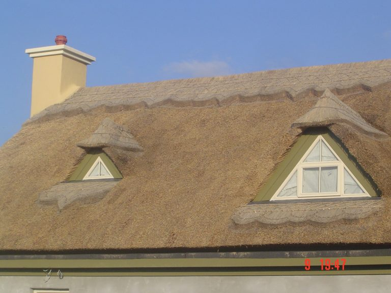 Thatching in Ireland - Thatched by Mike Davies
