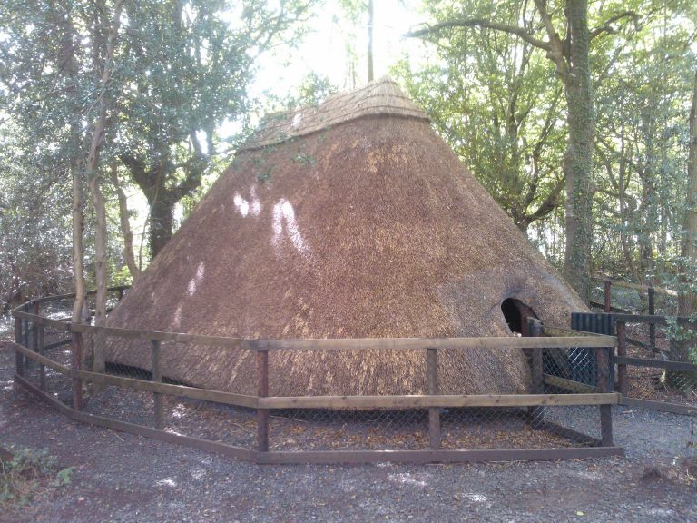 Roof Thatching in Ireland - Thatched by Mike Davies