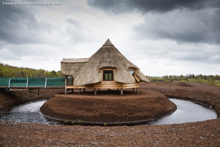 Roof Thatching in Ireland by Mike Davies